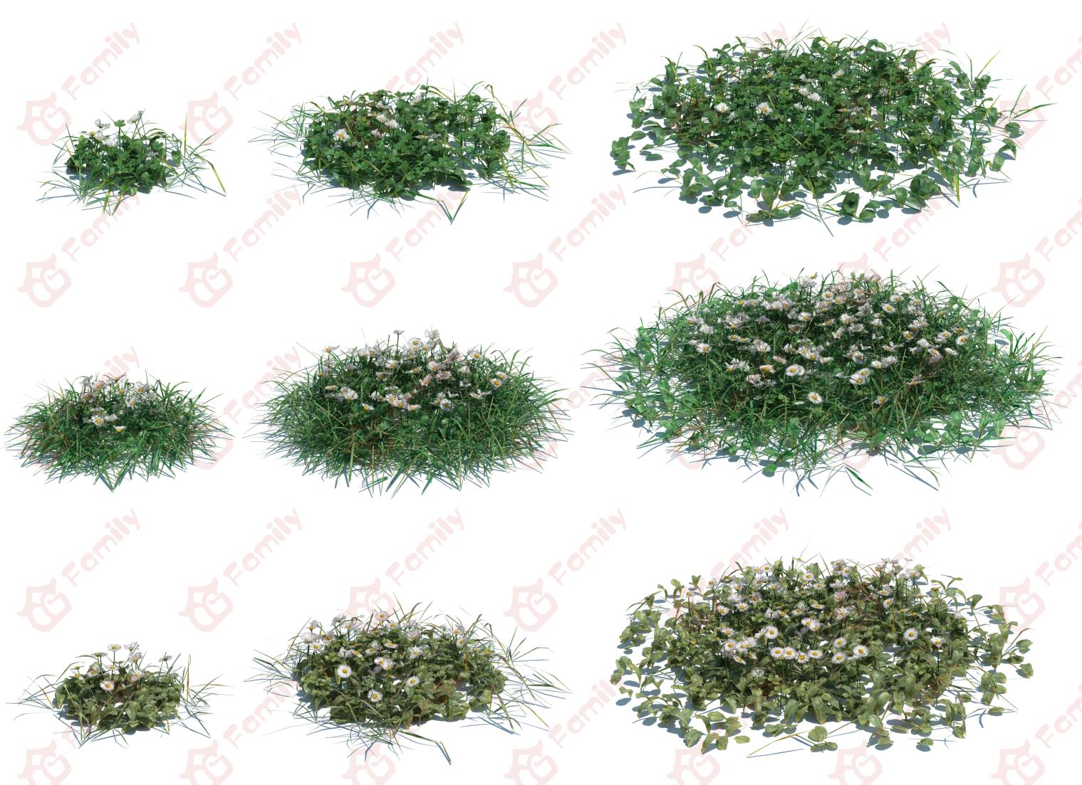 植物 花草 高进度草模型 花卉 绿草