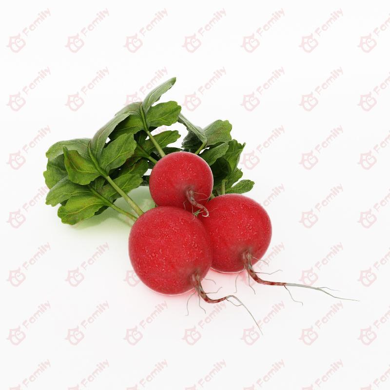 超精度蔬菜红色的萝卜3D模型免费下载