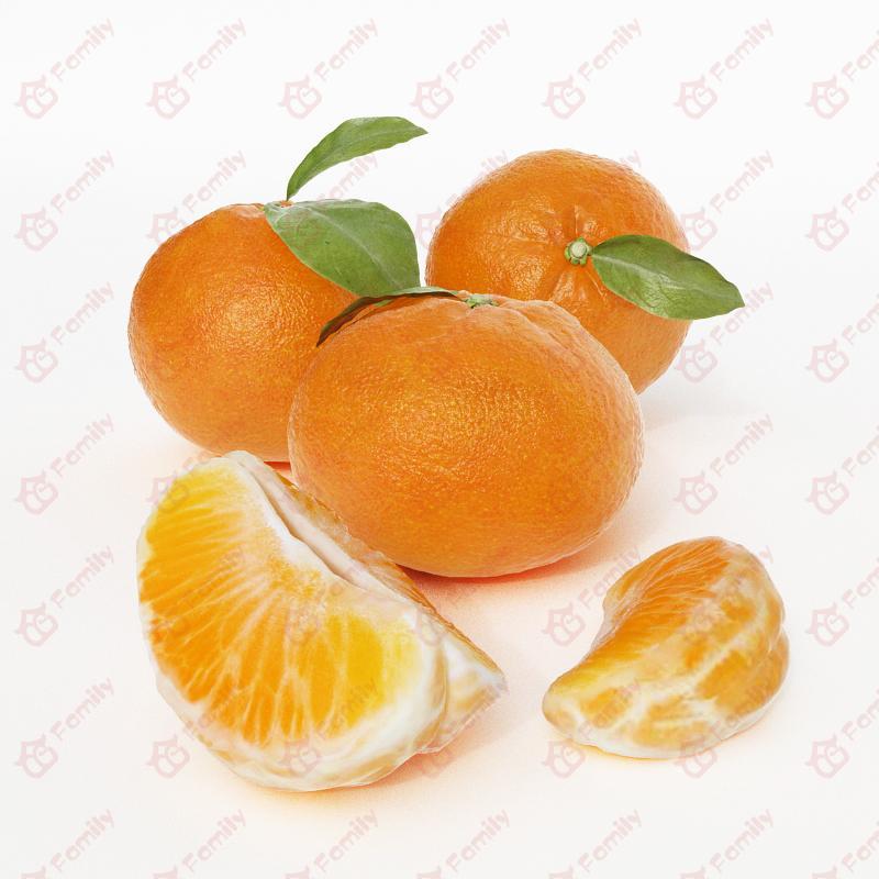 超精度水果橘子橙子3d模型免费下载