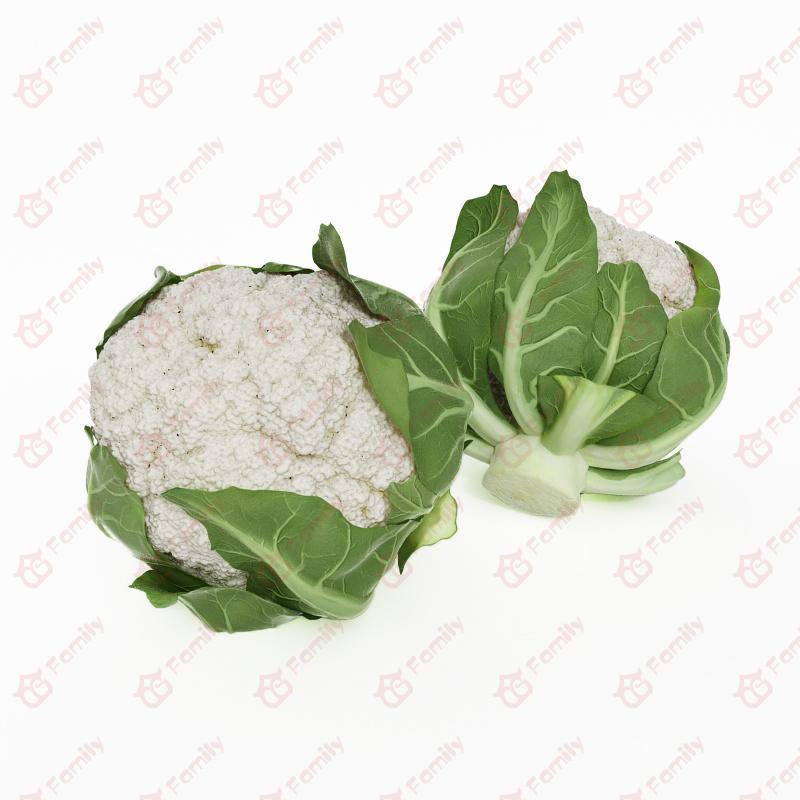 超精度蔬菜花椰菜3d模型免费下载