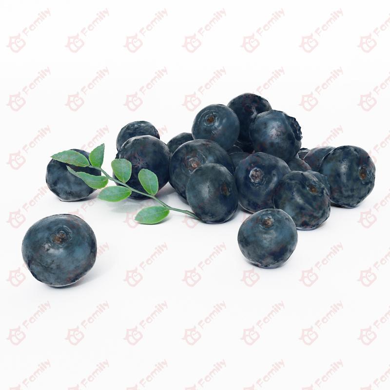 超精度水果蓝莓3d模型免费下载