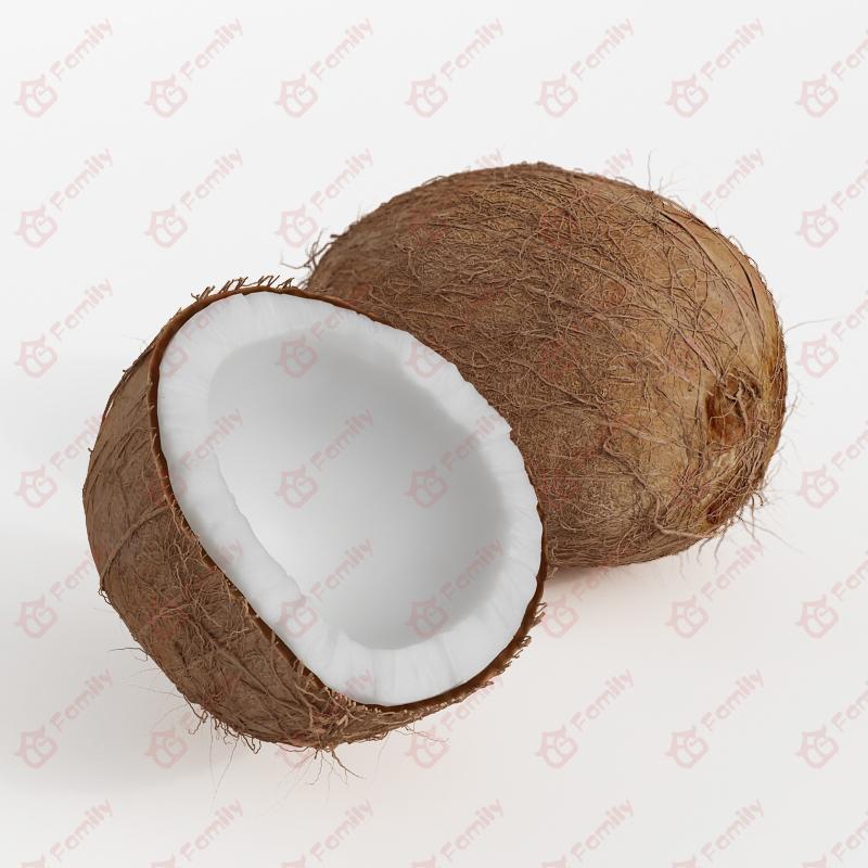 超精度水果椰子3d模型免费下载