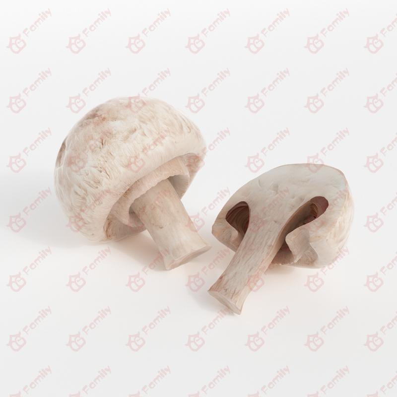 精细的蔬菜_白蘑菇_3d模型免费下载