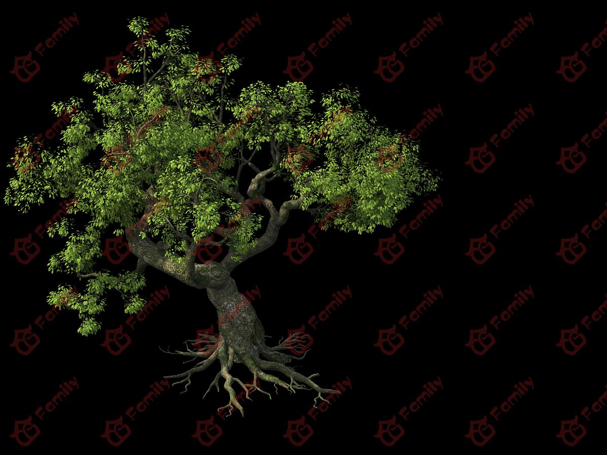 建古树老树古榕树写实树大榕树大树古树风景树巨树模型