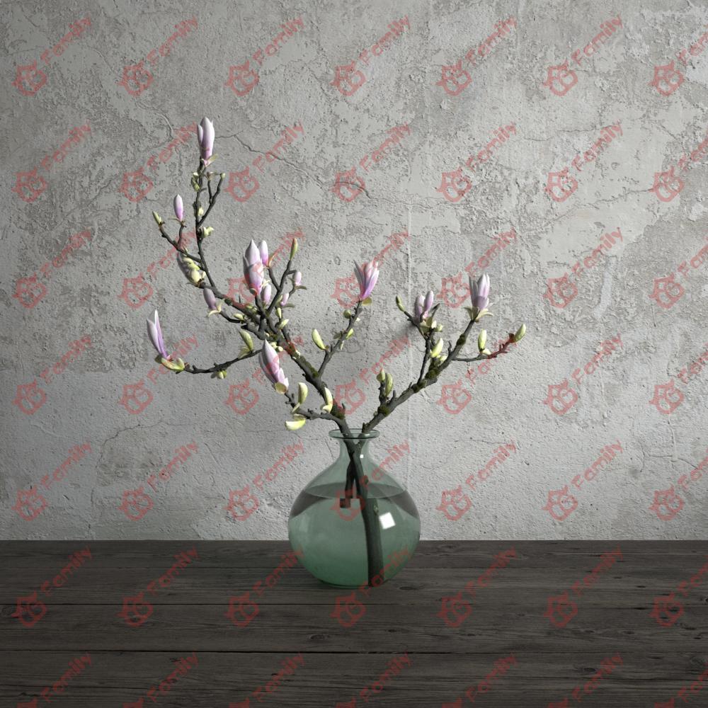 白色粉色粉色花高精度花卉盆花瓶栽室内植物装饰3D模型材质