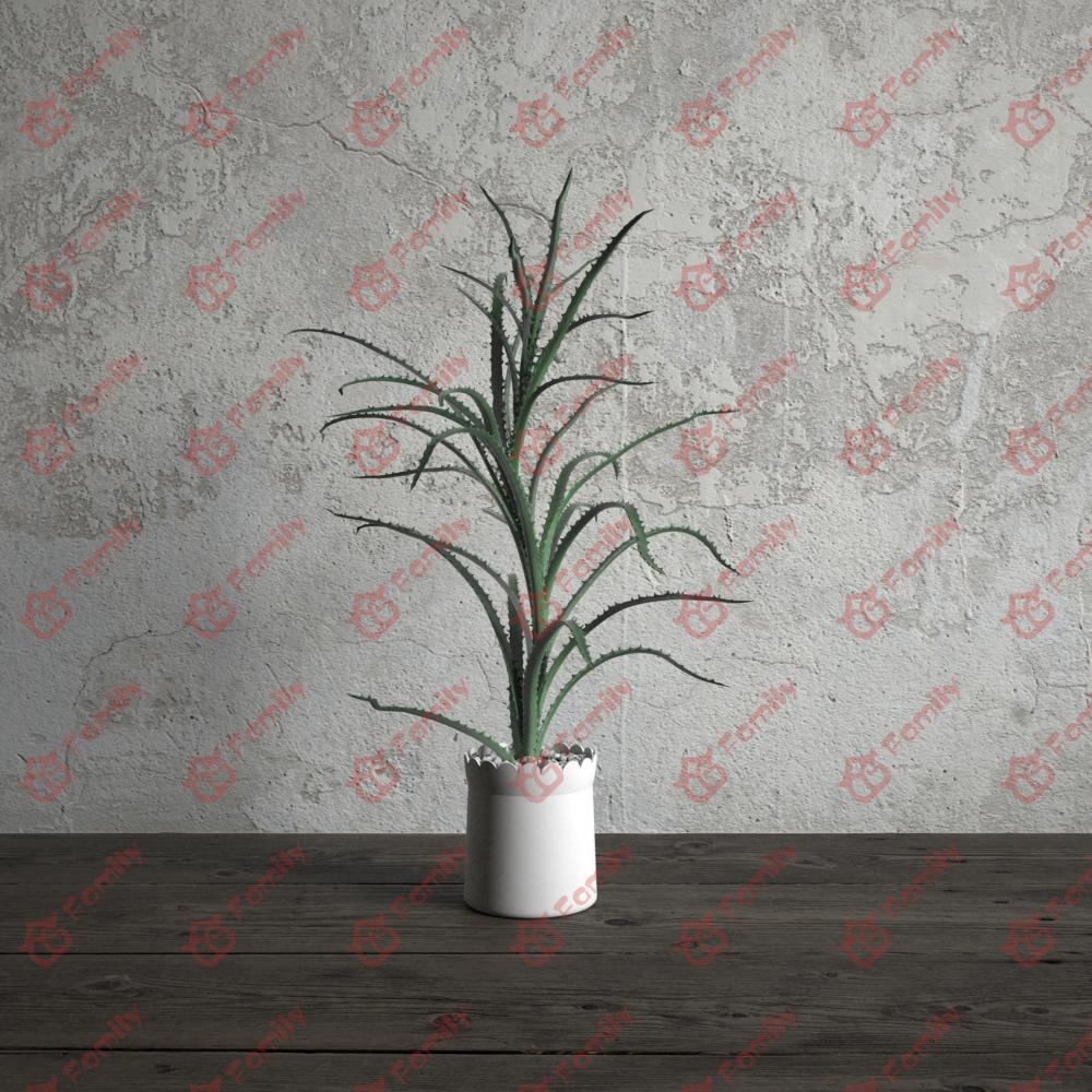 绿色植物芦荟长叶子花高精度花卉盆栽室内植物装饰3D模型材质