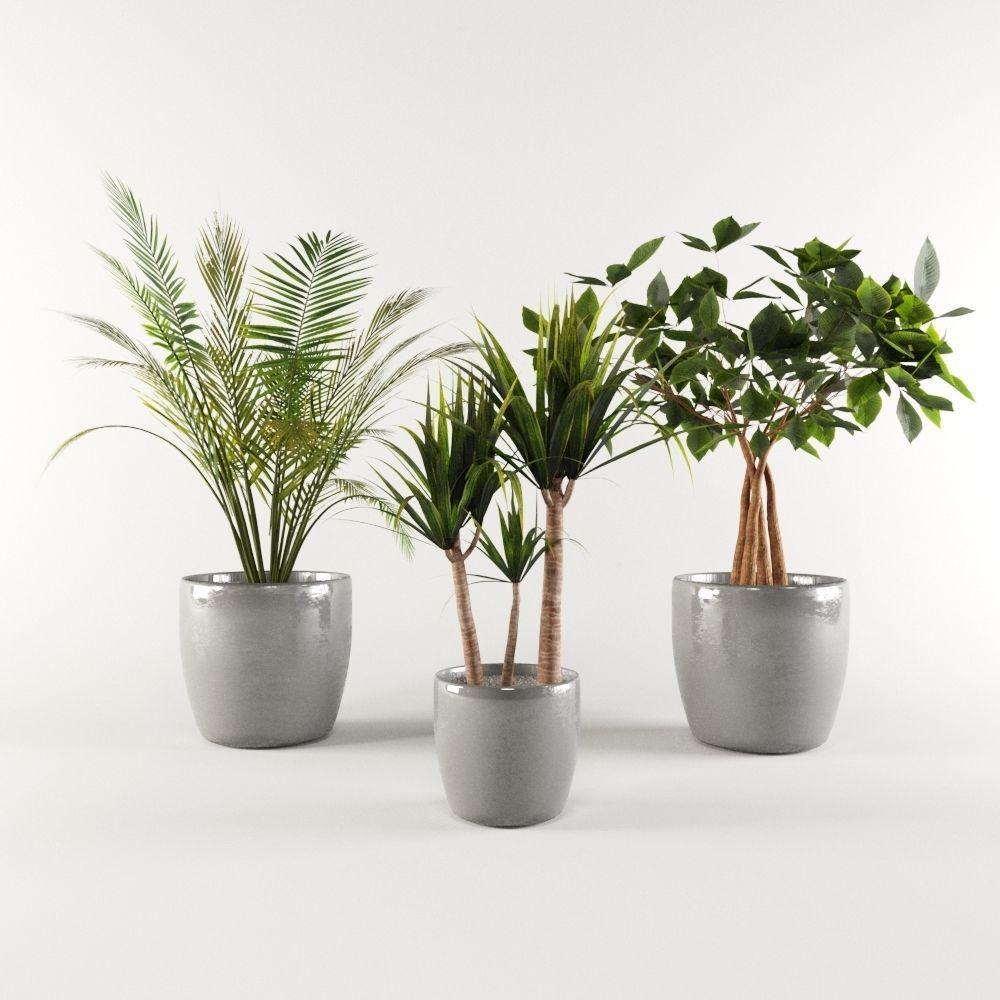 Vase Pack 1